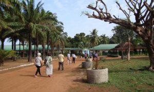 Ecos da Guiné: Afinal…