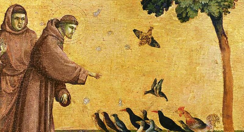 Todos irmãos na ecologia integral e espiritualidade franciscana